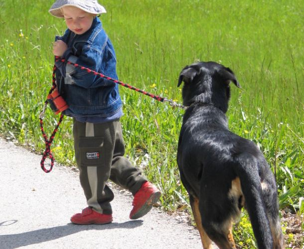 Djete i pas