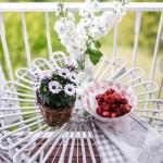 balkon proljeće