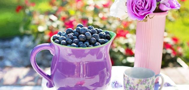 Uloga flavonoida ili P vitamina u zaštiti ženskog tijela
