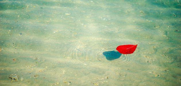 Tko i što sve može plivati