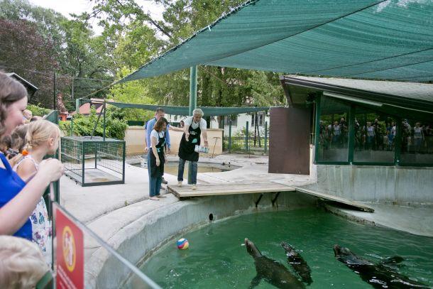 zf-zoo-proslava-3