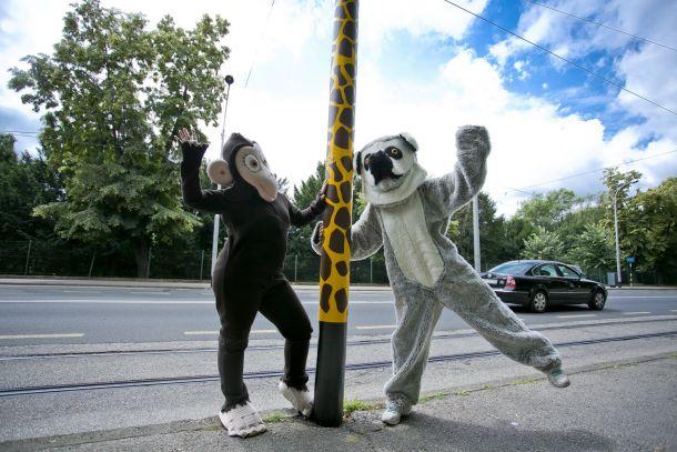 zf-zoo-proslava-4