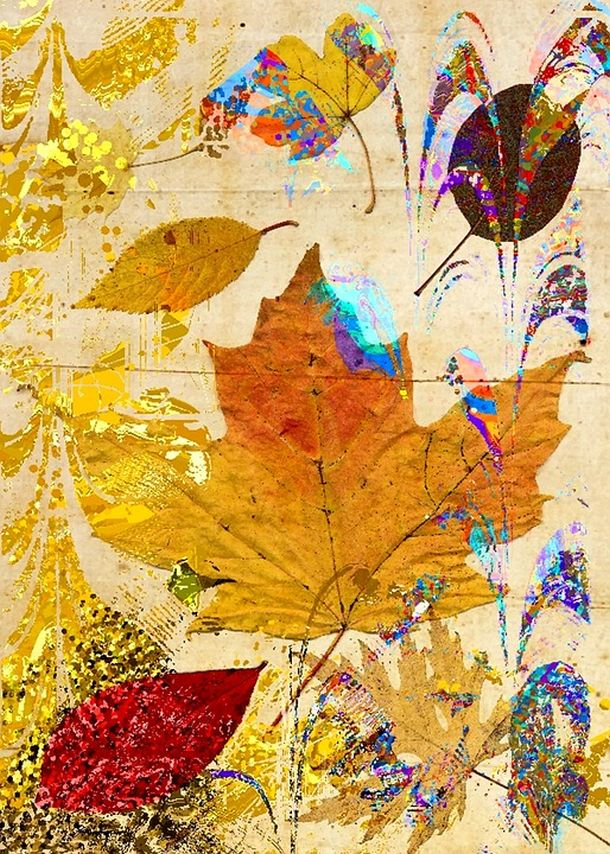 leaf-collage-1420861_960_720