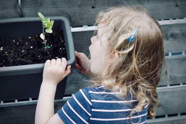 djeca i biljek priroda i dijete djevojčica vrt