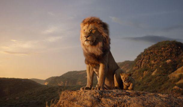 kralj-lavova-1