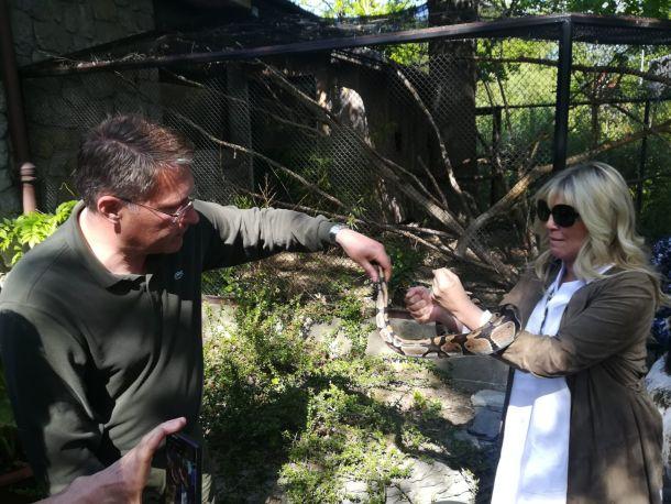 ljiljana vinković damir skok