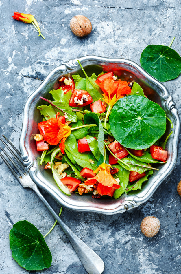 Tropaeolum majus dragoljub salata