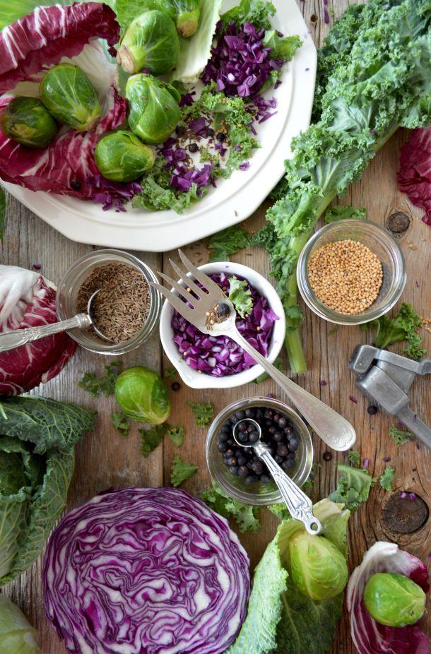 antioksidansi u povrcu i vocu