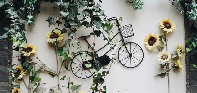voznja-bicikl
