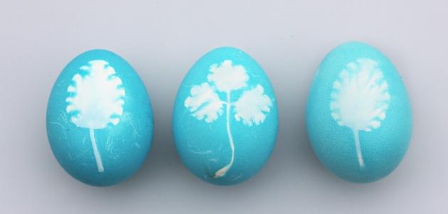 bojanje jaja s lukom