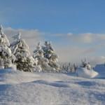 palnina snijeg skijanje odmor zima