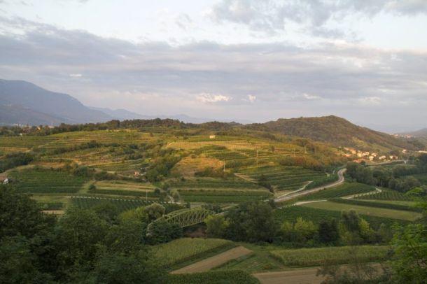 Vipavska-dolina