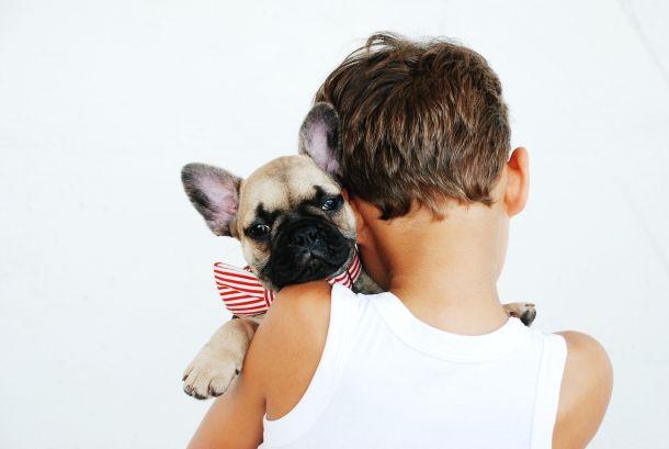 diete pas kućni ljubimac djeca