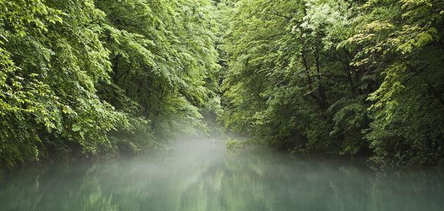 Kanjon Kamačnik savršeno mjesto za izlet u prirodu