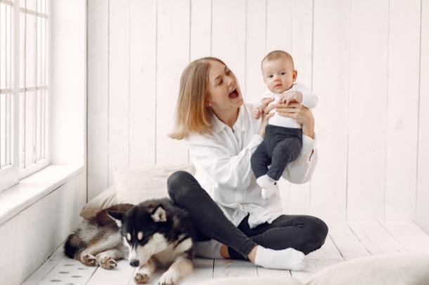 beba i haski pas-s