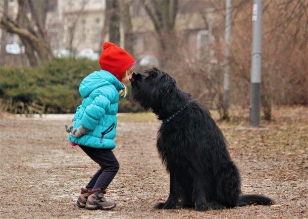 dijete i snaucer pas