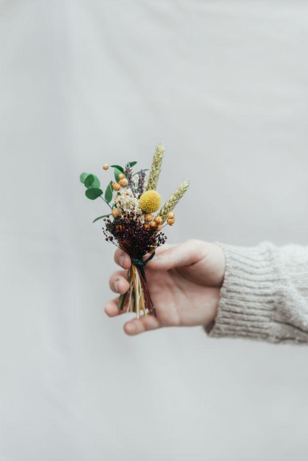 herbarij suho cvijece pexels-anete-lusina