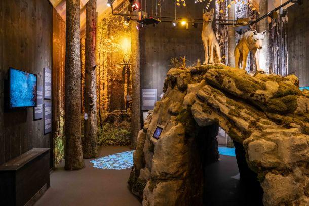 centar-za-posjetitelje-velike-zvijerii-3